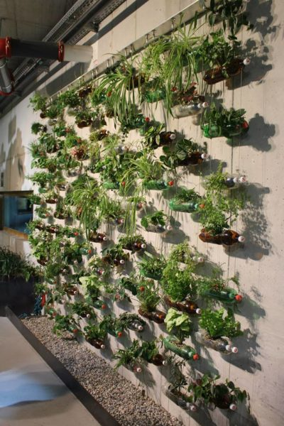 groen wall made of plastic bottles