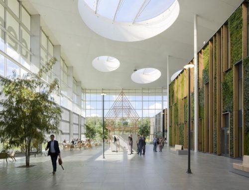 De meerwaarde van levend groen voor gezonde gebouwen. Praktijkvoorbeelden en business cases gezocht!