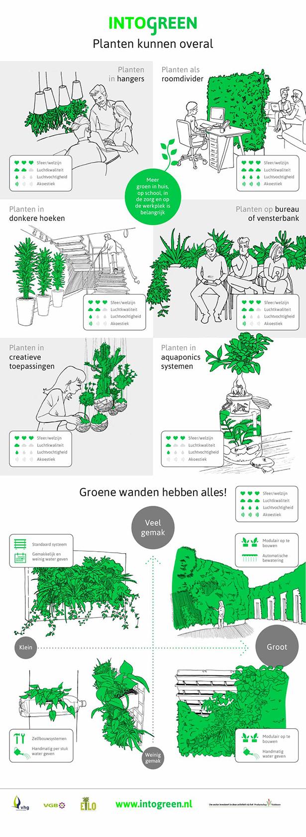 Planten kunnen overal