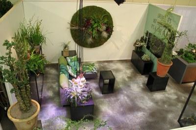 livingroom with all kind of plants