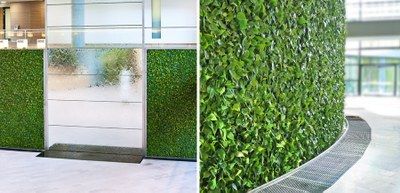green wall in office