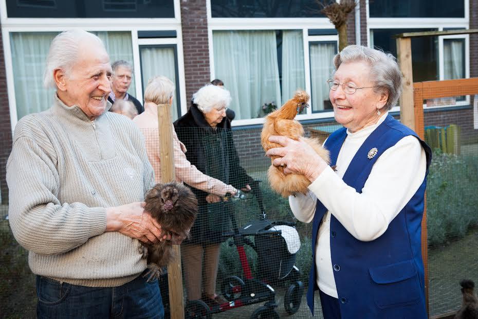 ouderen met kipjes