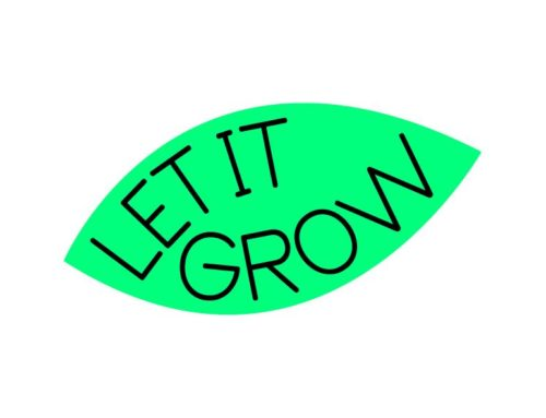 Let it Grow start tweede incubatieprogramma