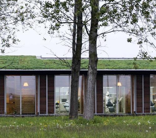 gebouw met groendak en bomen