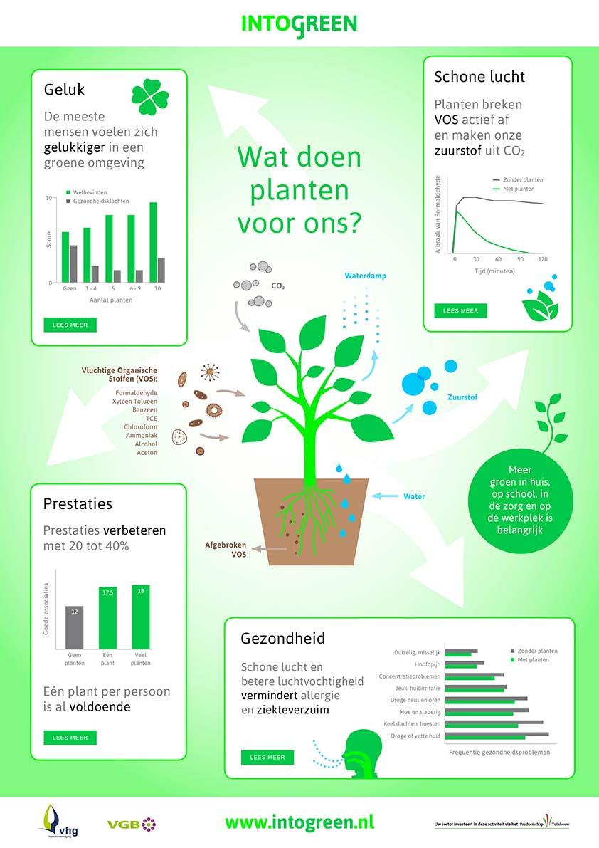 Wat doen planten voor ons?