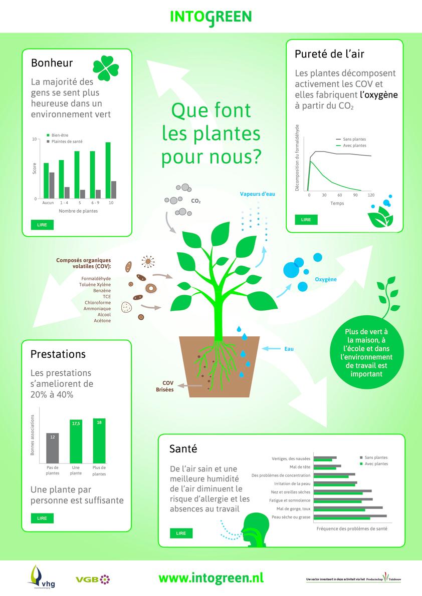 Que font les plantes pour nous