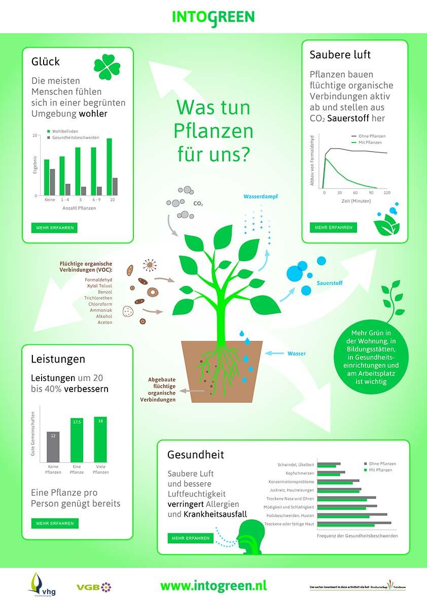 Was tun pflanzen fur uns?