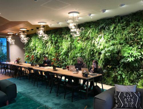 Sempergreen Vertical Systems winnaar Interieurbeplanting van het Jaar 2018