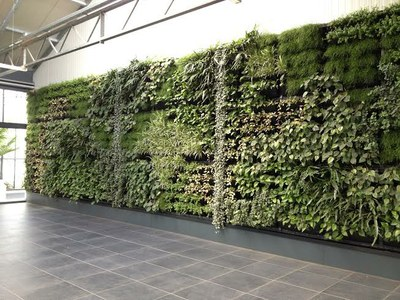 vegetable wall