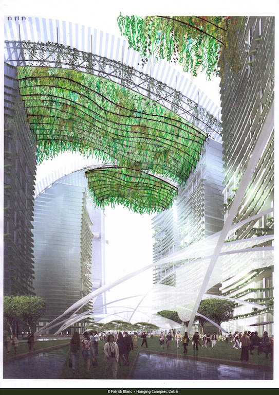 drawing of hanging green in big building