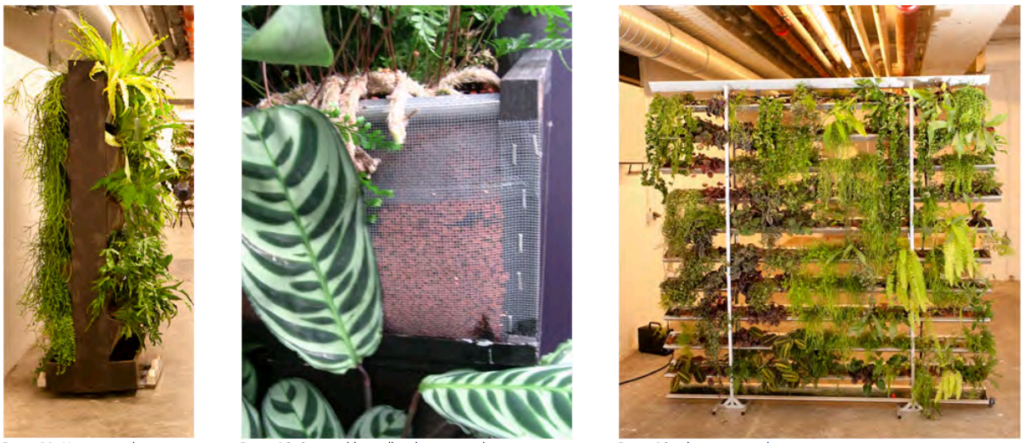 examples of office horizontal gardens