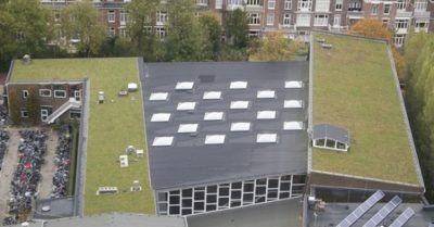 black roof aside green roof
