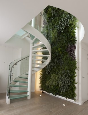 strairs with green wall