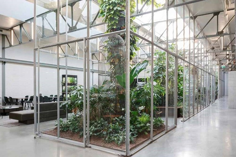 greenhouse in building